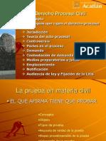 PRUEBAS Derecho Procesal Civil 2013-2