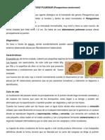 Diatomatosis Pulmonar (Paragonimus Westermani) Clonorquiasis, Taeniasis