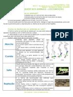 1.2 - Diversidade dos animais - Locomoção -  Ficha Informativa.pdf