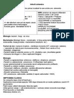 113882358-19-Infectii-sistemice.doc