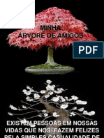 Bonsai de Amigos