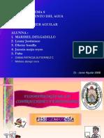 Capitulo 8 Agua Todo Fisiopatologia 2013