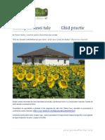 Conceptia-casei-tale.-Ghid-practic.pdf