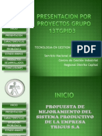 Presentacion Proyecto Grupo 13tgpid3 Trigus s.A