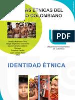 identidad etnica en el pacifico