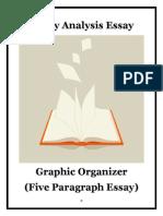 literaryanalysisessaygraphicorganizer