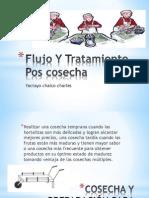 Flujo y tratamiento poscosecha.pptx