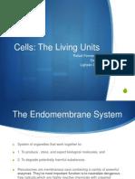 Endomembrane System.pptx