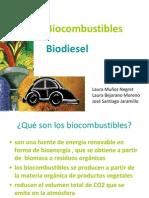Bio Combust Rib Les