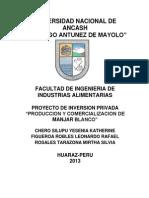 Proyecto de Inversion- Industrias Lacteas 2012-II.