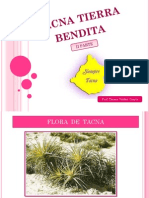 TACNA FLORA Y FAUNA.pdf