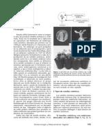 SEMILLAS ARTIF.pdf