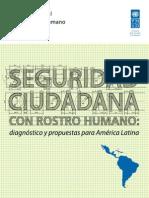 Informe Desarrollo Humano 2013-2014 PNUD Seguridad Ciudadana