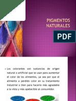 PIGMENTOS NATURALES