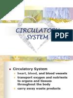 3.1 CirculatorySystem