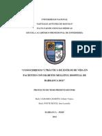 proyectodetesis2012original1-121205215530-phpapp02