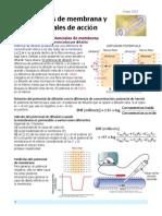 Cap5 Guyton pdf.pdf