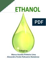 Bio Ethanol i To