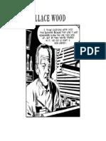 WallyWoodreflecting.pdf