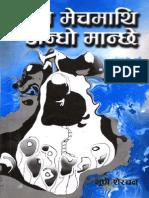 BhupiSherchan2026BS_GhumneMechMathiAndhoManchhe.pdf