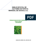 Proyecto Papaya Maradol