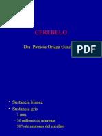 Histología SNcerebelo
