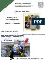 1.2 Principios y Conceptos