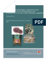 Caracterización fisiológica y agronómica de ajo elefante