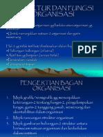 Struktur Dan Fungsi Organisasi