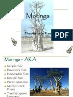 17585_Moringa  4