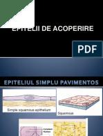 LP3. Epitelii de acoperire.pps