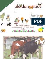 animale-domestice.pdf