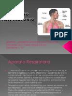Aparato Respiratorio 1.pptx