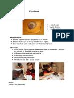 prelucrarea sfeclei.doc