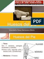 huesosdelpie-110608004151-phpapp02
