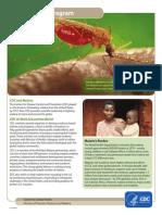 Cdc Malaria Program