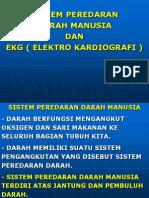 PEREDARAN DARAH & EKG.ppt