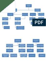 Mapa-Conceptual-Desarrollo-Humano.docx