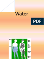 02_water.ppt