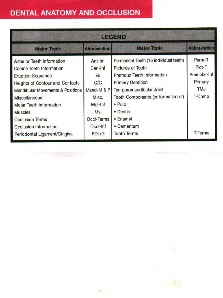 Nett Wheelers Dental Anatomy Physiology And Occlusion Bilder ...