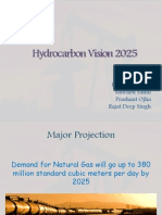Hydrocarbon vision 2020