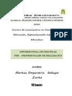 Informe de Practica Preprofesionales DeALIZACION RE