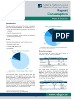 UAE Electricity and Water Consumption Report