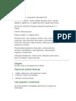 Agrião - Nasturtium officinalis - Ervas Medicinais - Ficha Completa Ilustrada