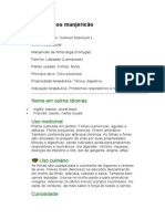 Alfavaca ou mangericão - Ocimum basilicum L. - Ervas medicinais - Ficha Completa Ilustrada