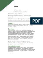 Anis-estrelado - Illicium verum - Ervas Medicinais - Ficha Completa Ilustrada