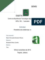 Portafolio de Evidencia Tics Nuevo Fer