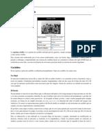 Esgrima criolla.pdf