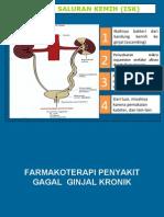 ISK DAN GAGAL GINJAL (RINGKASAN).pdf