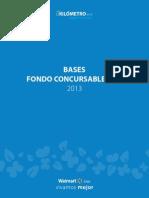 Bases Fondo Concursable2013